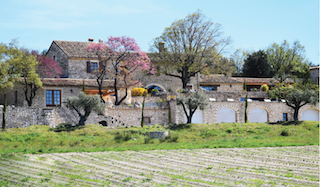 DOMAINE DES GRILLONS