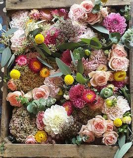 Fleurit Sourit